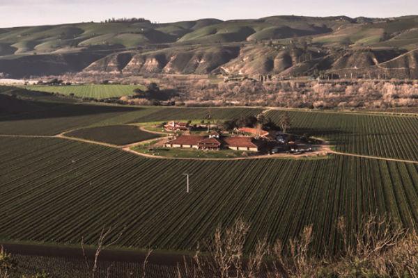 Visit - Winery Tasting Room